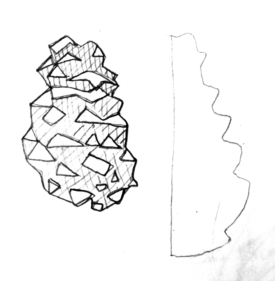 Stylized Pine Cone